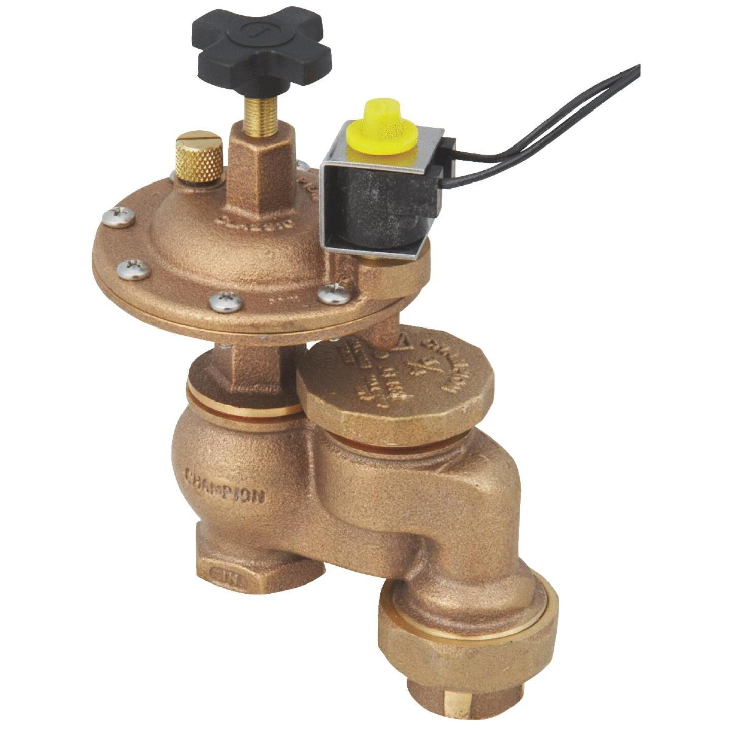Champion 3/4 In. 25 to 150 psi Automatic Anti-Siphon Valve Image 1